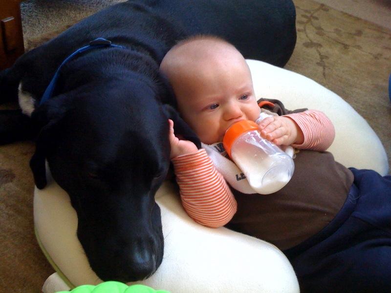 Cuddling2